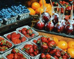 Jedzte ovocie a zeleninu 5-krát do dňa